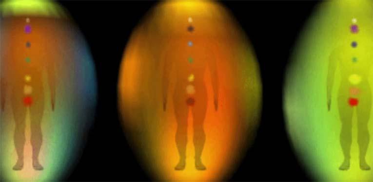 biopole-cheloveka-chto-eto