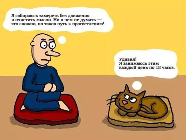 meditacia-nachinayushim-v-domashnih-usloviyah-c-hego-nachat