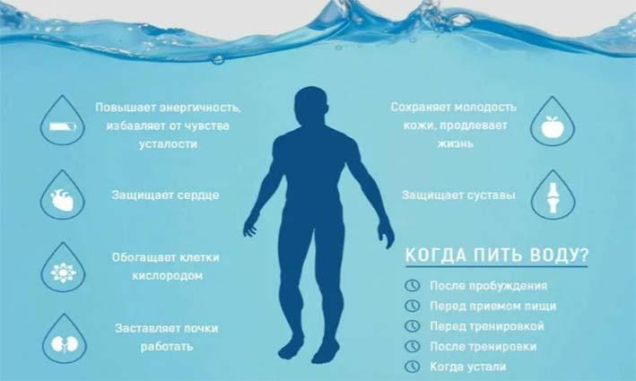 skolko-vody-dolzhen-pit-chelovek-kagdyi-den