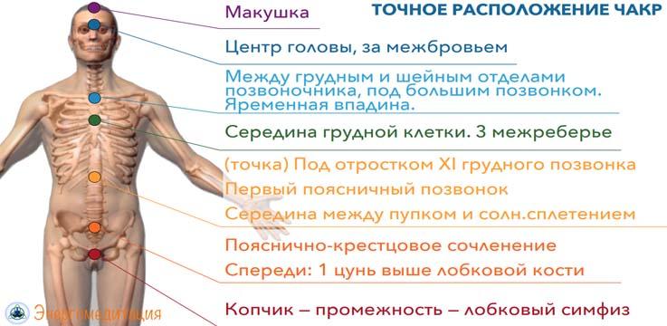 chakry-cheloveka-raspolozhenie-i-znachenie