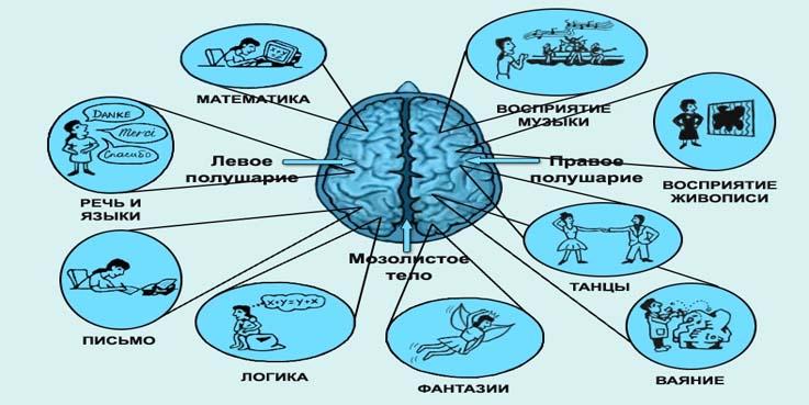 uprazhneniya-dlya-mozga-dlya-pozhilyx