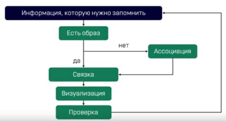 mnemonika-uprazhneniya-razvitiya-pamyati-i-vnimaniya-u-vzroslyx