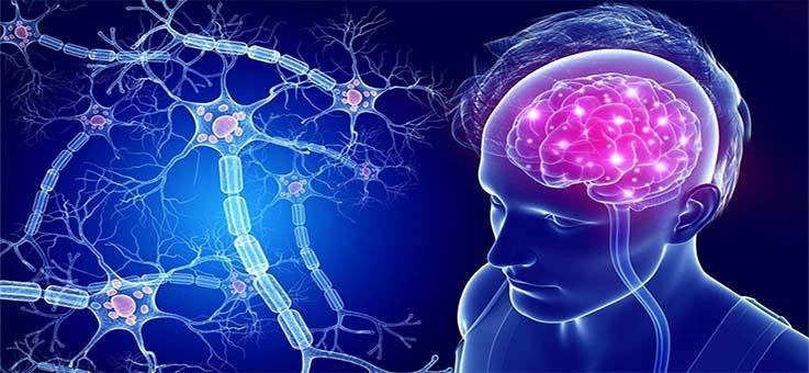 vosstanovlenie-nejronnyx-svyazej-golovnogo-mozga